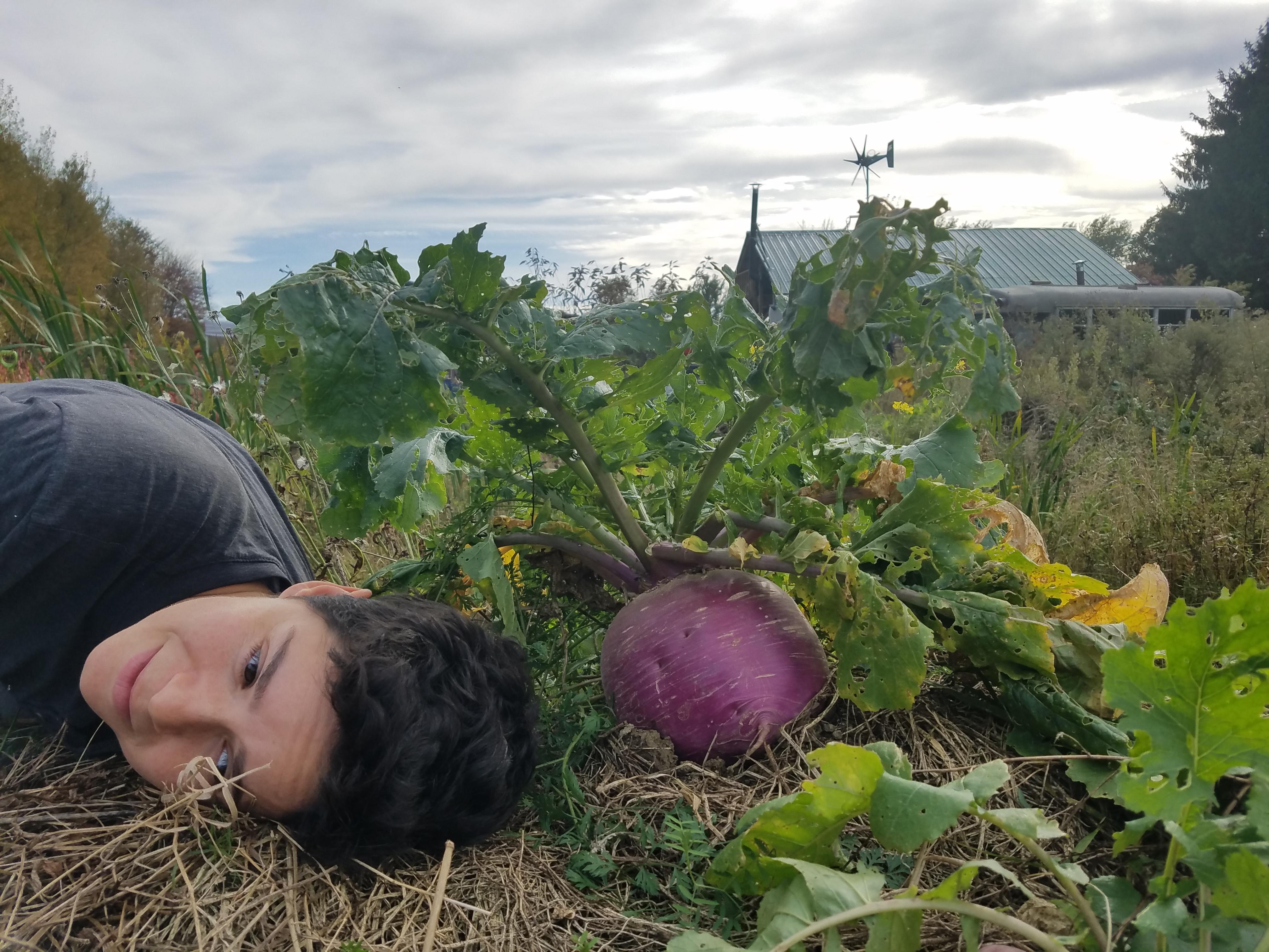 sarah and cabbage