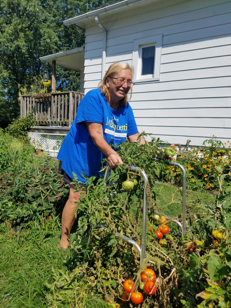 Barbara repurposed her old walker to a tomato stake!